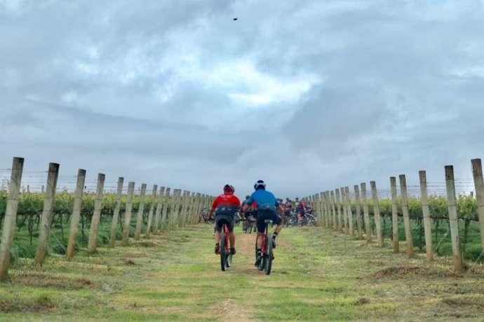 Vinícola Góes surpreende e reúne ciclismo e vinho