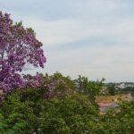 Cidade italiana vai pagar aluguel para quem se mudar para lá